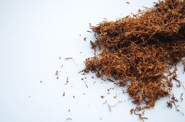Tabaco para Papel de Fumar